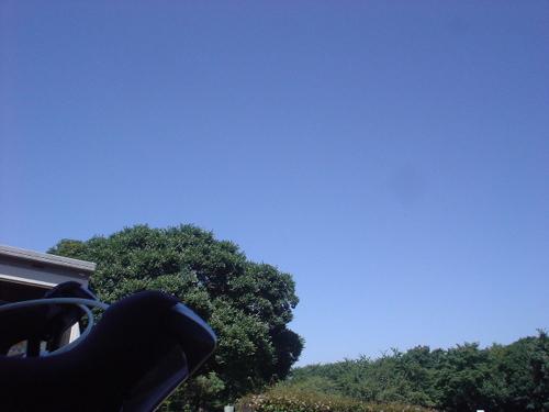 DSC04345.jpg